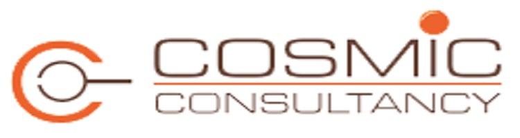 Cosmic Consultancy
